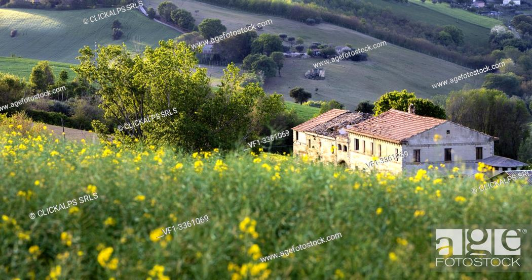 Photo de stock: Marche's countryside, Montesangiusto village, Macerata district, Marches, Italy.
