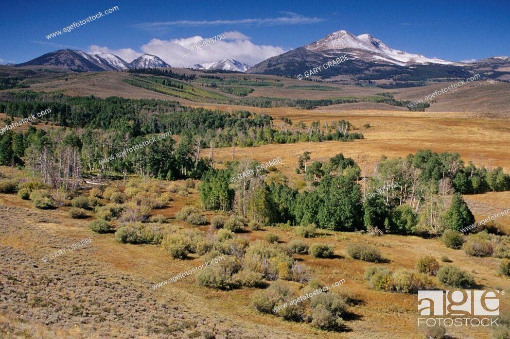 Stock Photo: Dunderberg Peak from Conway Summit, near Lee Vining, Eastern Sierra, CALIFORNIA.