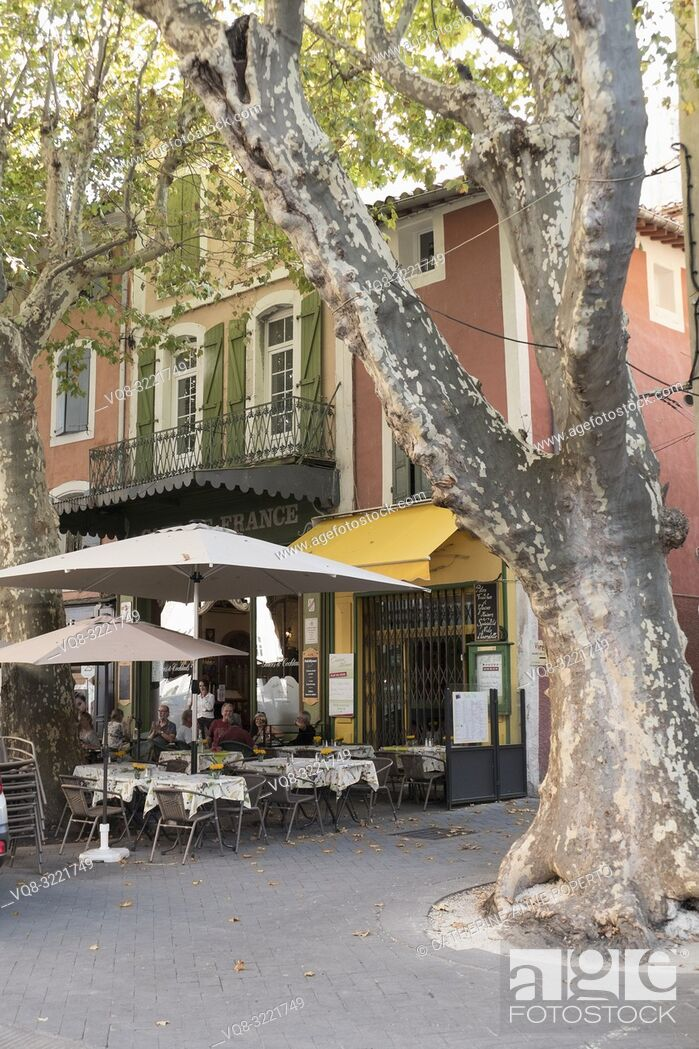 Imagen: Ancient, rustling plane tree with mottled grey and white textures in the main square of L'Isle -sur-la-Sorgue, and fallen leaves claimed by the Mistral wind.
