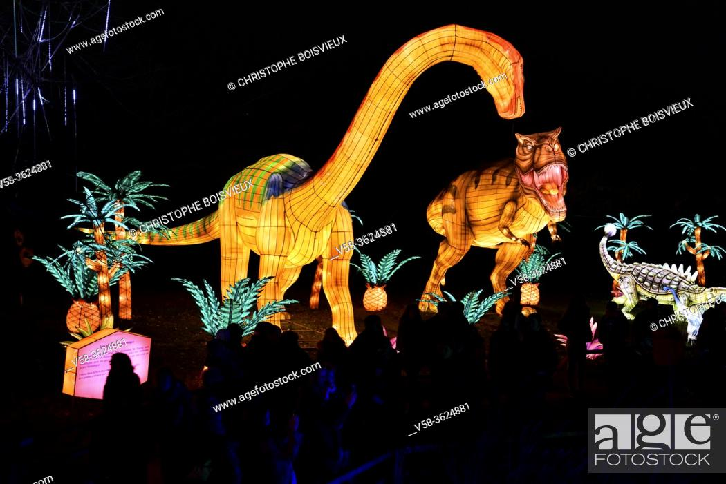 Stock Photo: France, Tarn, Gaillac, Festival des lanternes (Chinese Lantern Festival), Illuminated dinosaurs evoking the Zigong dinosaur fossil site in Sichuan. .
