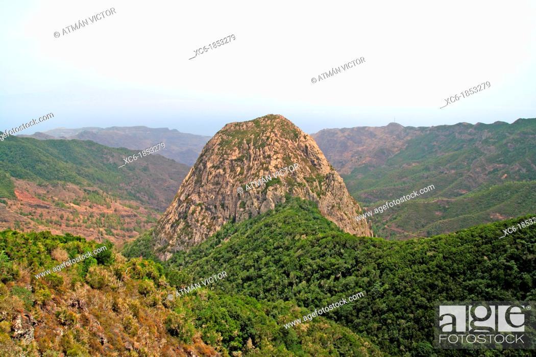 Stock Photo: Rock in El Cedro forest in La Gomera island Spain.