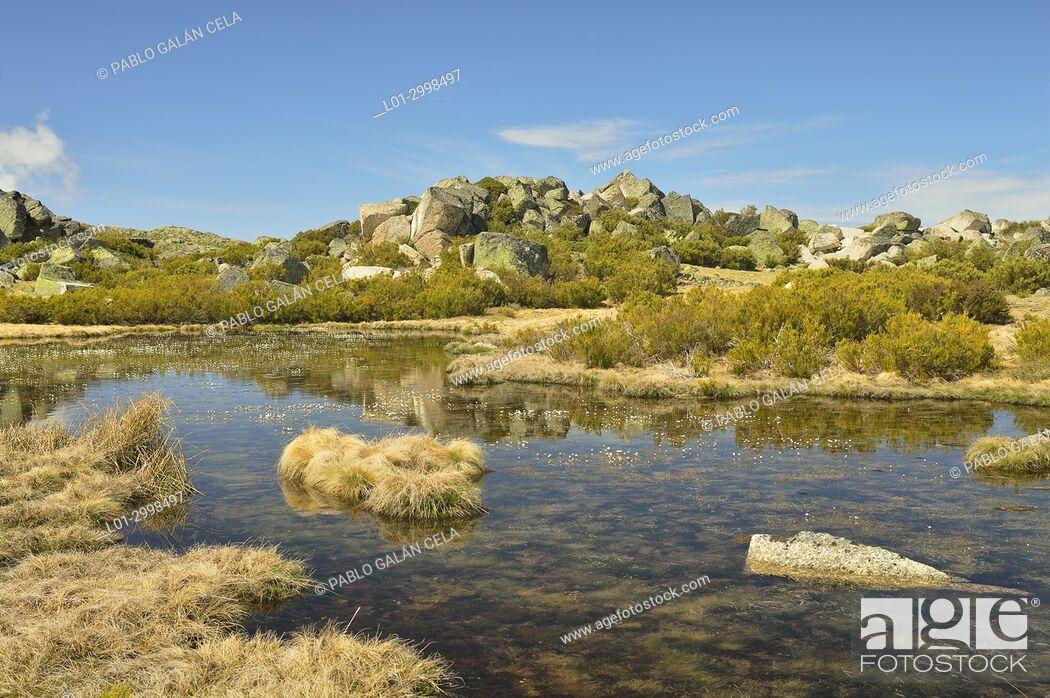Stock Photo: Small lakes in Serra da Estrela. Portugal.