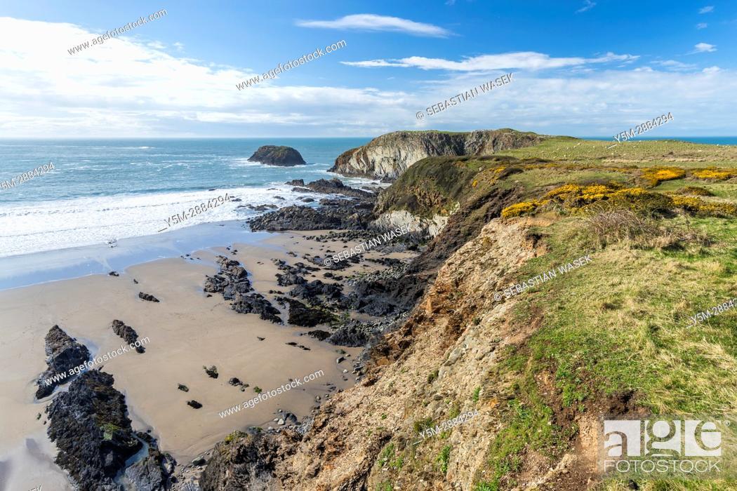 Stock Photo: Traeth Llyfn seen from Pembrokeshire Coast Path from Abereiddy to Porthgain, Pembrokeshire Coast National Park, Abereiddy, Wales, United Kingdom, Europe.