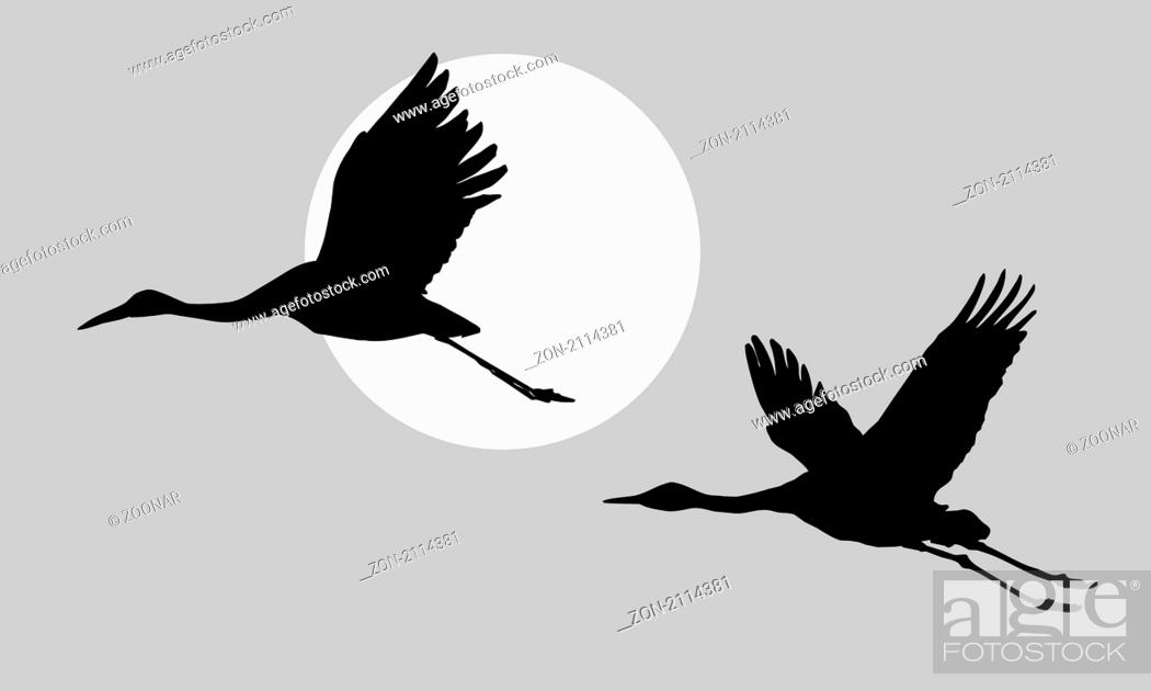 Stock Photo: vector illustration of the cranes.