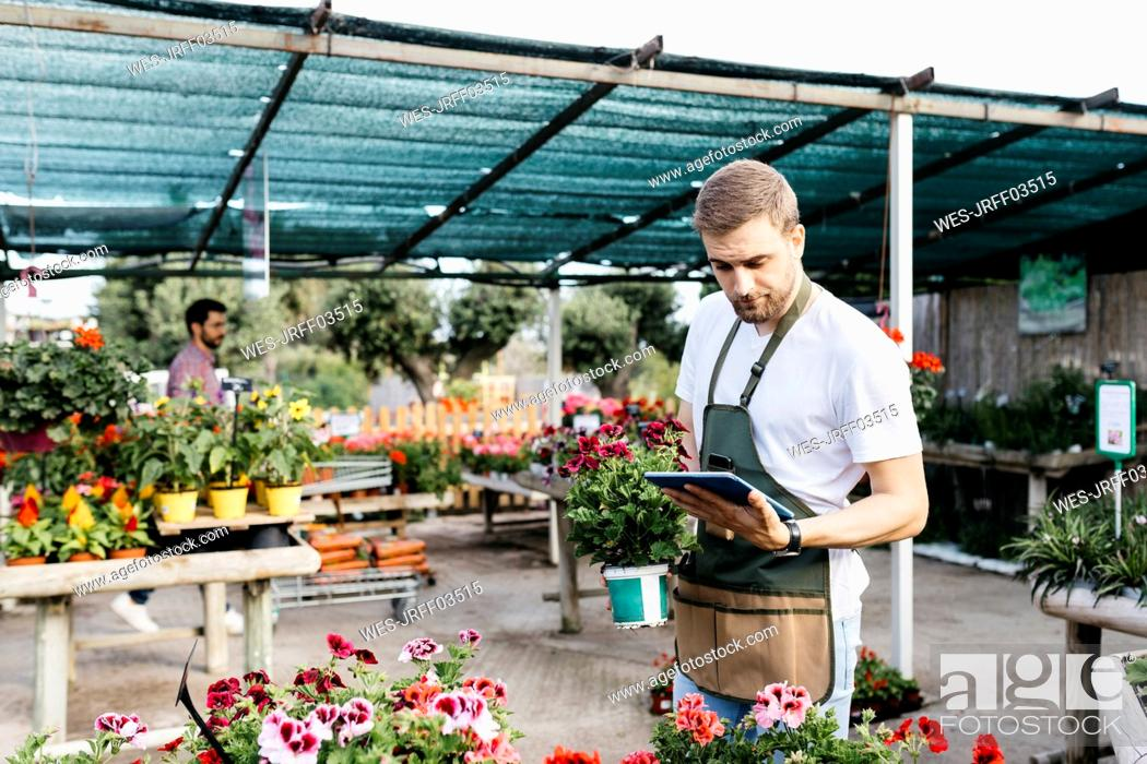 Stock Photo: Worker in a garden center using a tablet.