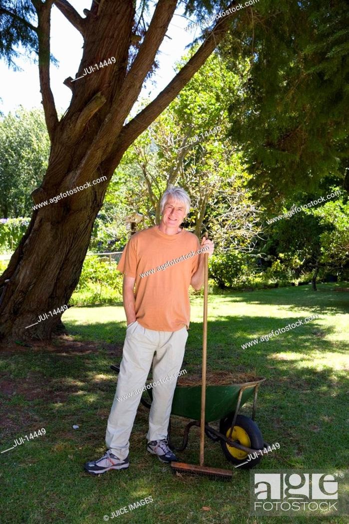 Stock Photo: Senior man with rake by wheelbarrow, smiling, portrait.