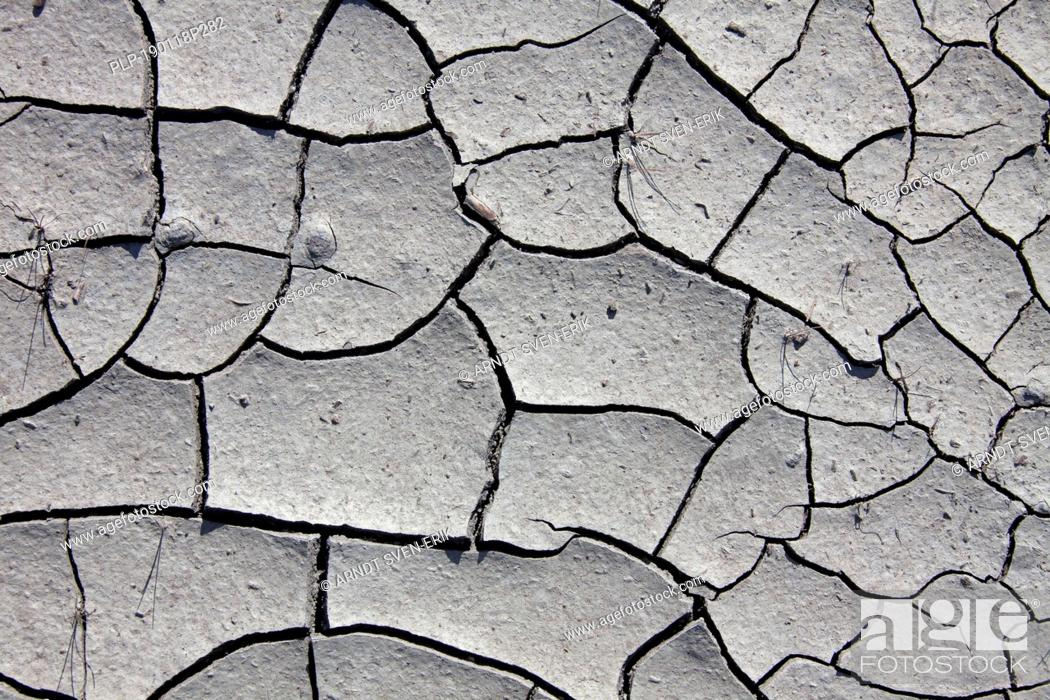 Stock Photo: Dry cracked mud in dried out pond / stream caused by prolonged drought due to extreme summer temperatures.