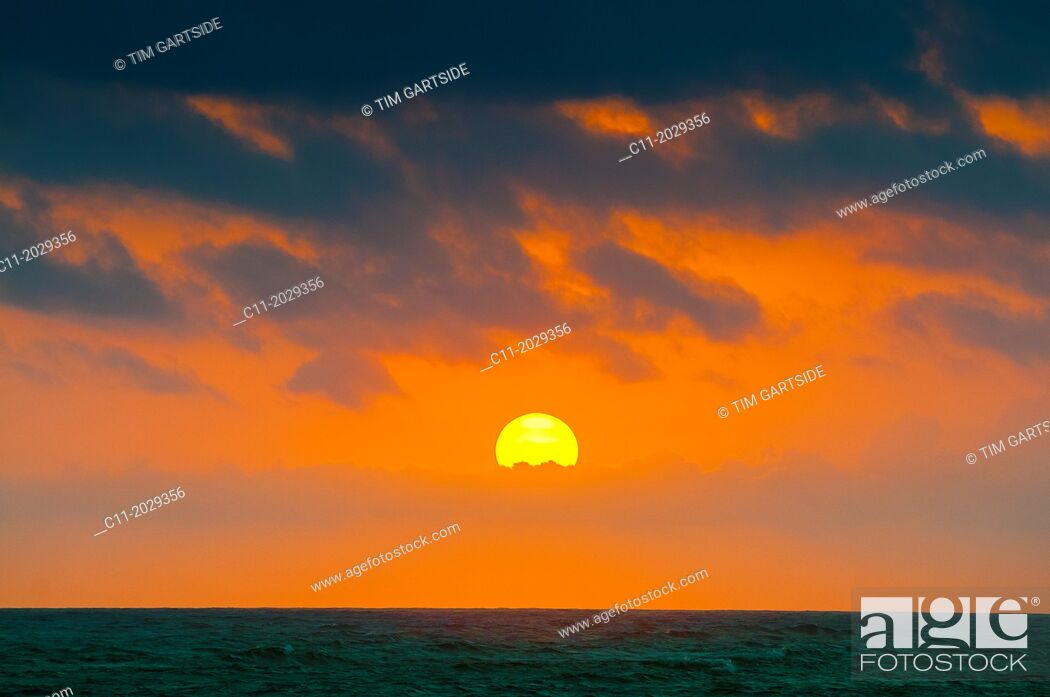 Imagen: beach; Riu Palace; hotel; Punta Cana; Dominican Republic; Caribbean.