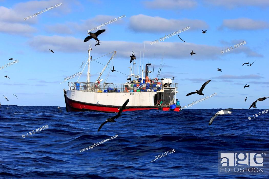 Stock Photo: Trawler, catching fish followed by Sea Birds, Cape of the Good Hope, Cape, South Africa, Africa.