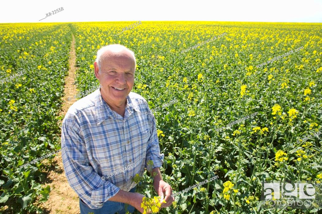 Stock Photo: Smiling farmer standing in sunny rape seed field.