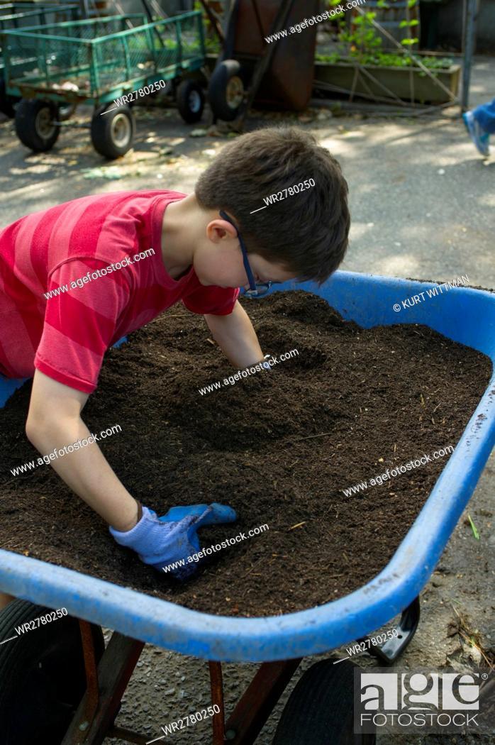 Stock Photo: Boy Sifting Soil in Community Garden.