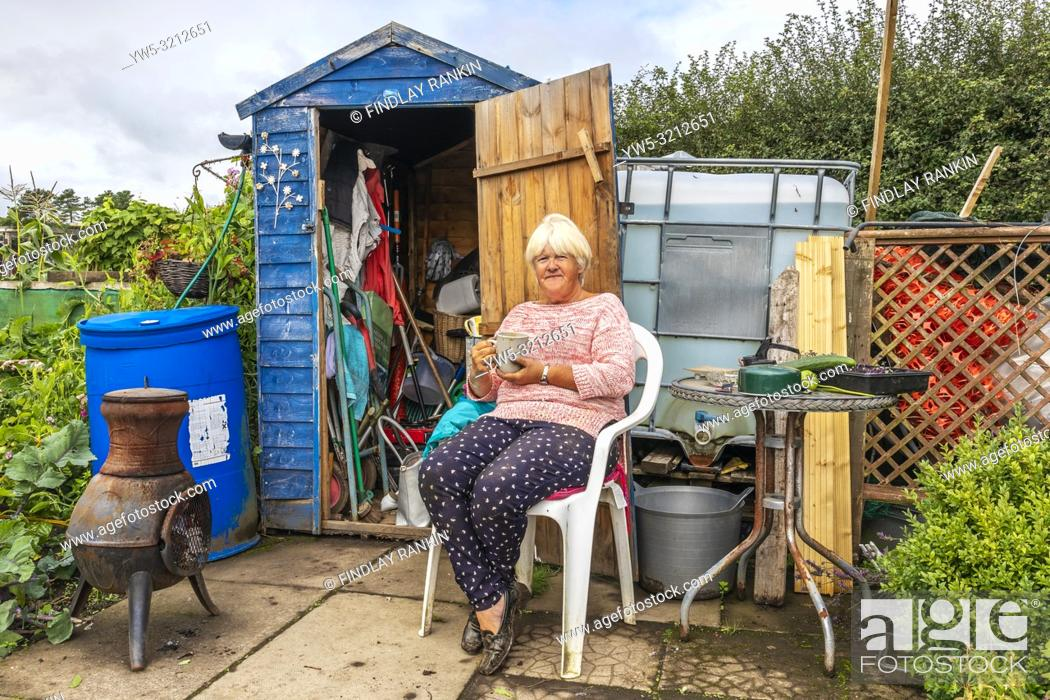 Stock Photo: ANNA FERROL Plot 47, Eglinton Growers allotments, Kilwinning, Ayrshire, Scotland.