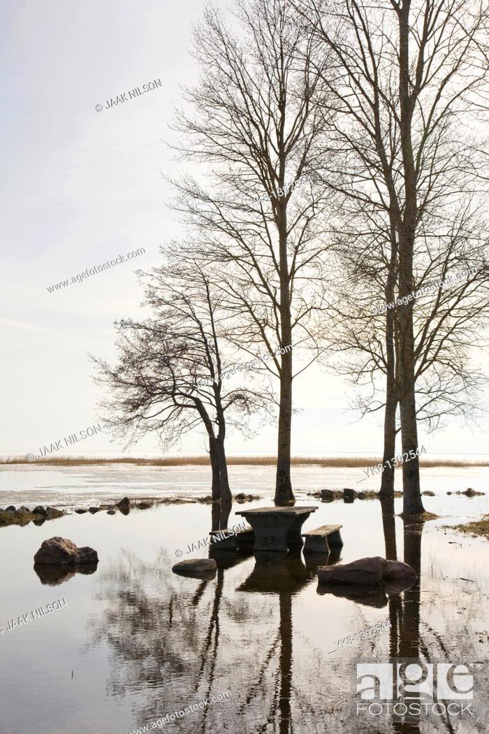 Stock Photo: Flooded River Emajõgi and Trees Silhouettes in Rannu Jõesuu by Lake Võrtsjärv, Estonia.