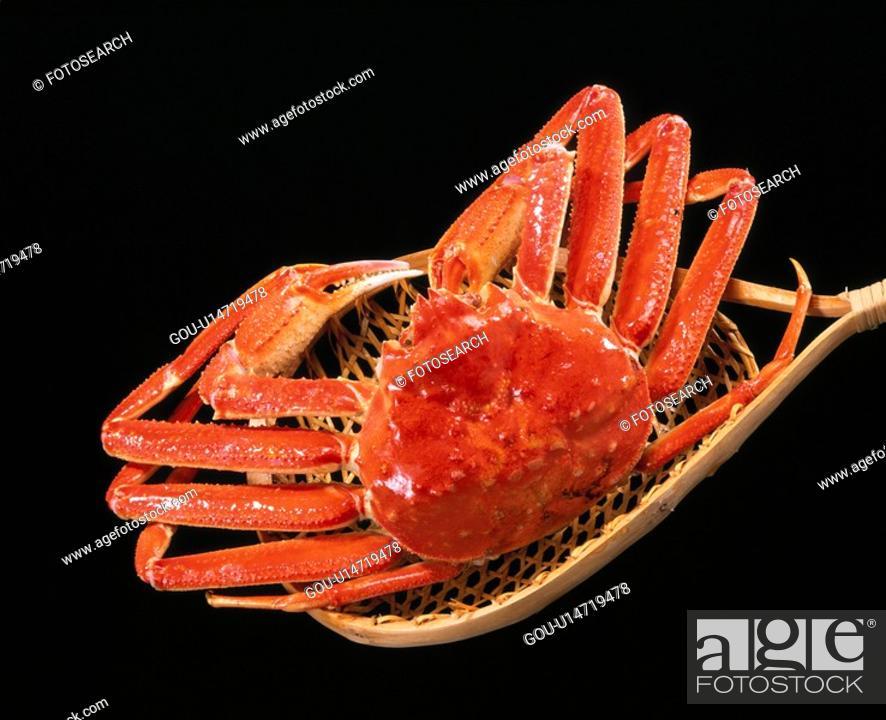 Stock Photo: Snow Crab.