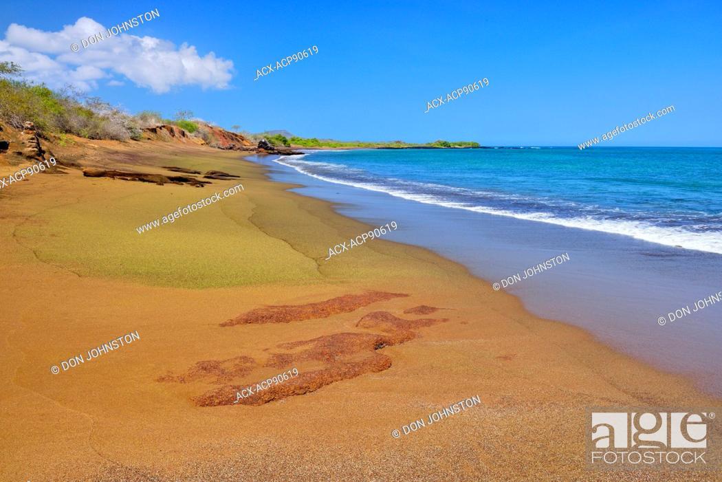Stock Photo: Olivine beach near Punta Cormorant, Galapagos Islands National Park, Floreana Island, Ecuador.