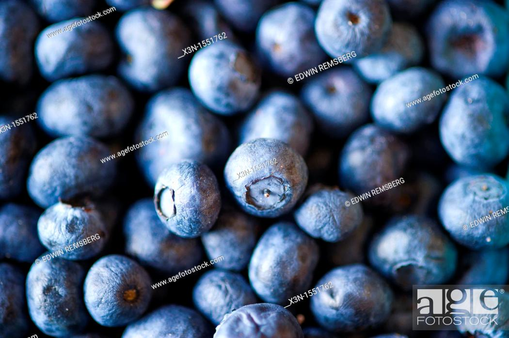 Stock Photo: Crates of blueberries for sale at a farmer's market.