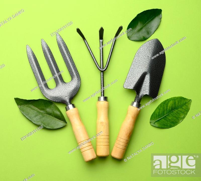 Stock Photo: set of garden tools with wooden handles on a green background, top view.