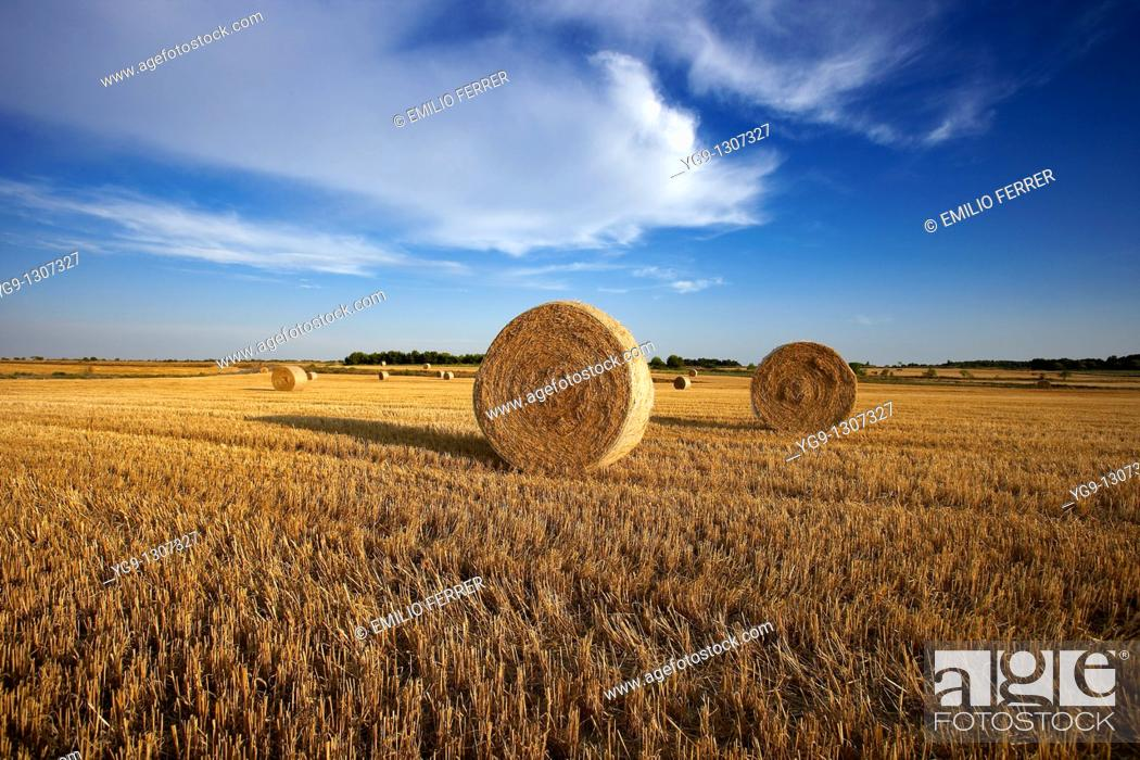 Stock Photo: Stubble field, LLeida province, Spain.