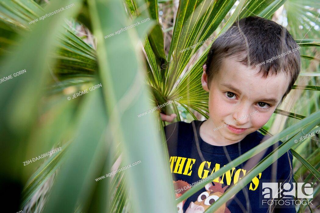 Stock Photo: Boy looking through foliage, portrait.