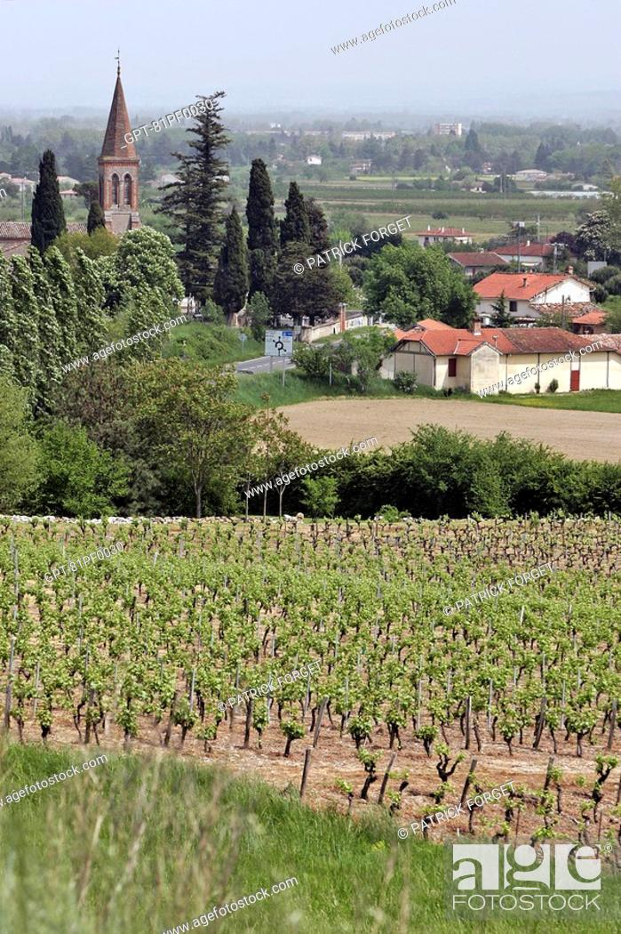 Stock Photo: THE VINEYARDS AND VILLAGE OF GAILLAC, TARN 81, FRANCE.