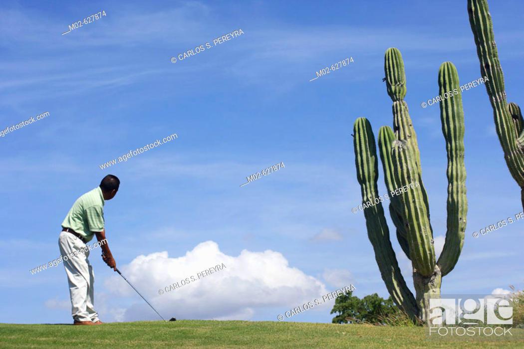 Stock Photo: Golf in Los Cabos, Baja California Sur, Mexico.