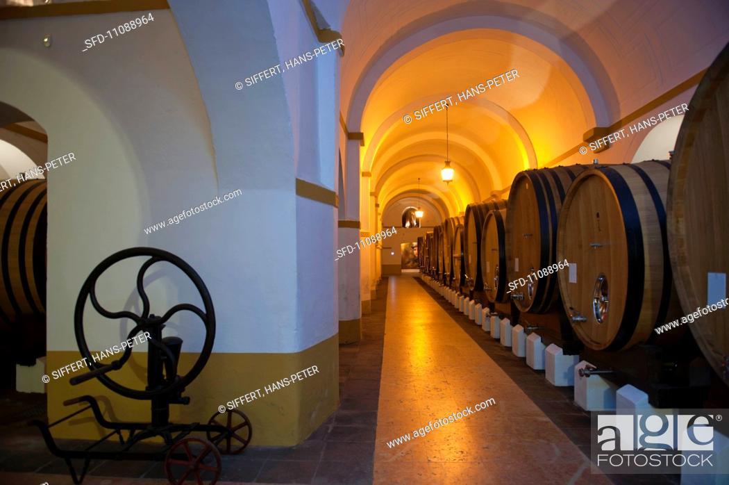 Stock Photo: Barrel cellar at the Fundacao Eugenio de Almeida winery Portugal.