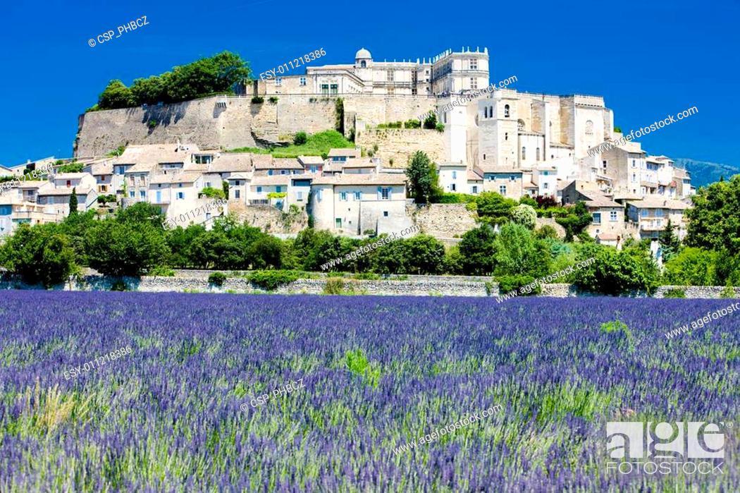 Stock Photo: Grignan with lavender field, D�partement Dr�me, Rh�ne-Alpes, France.