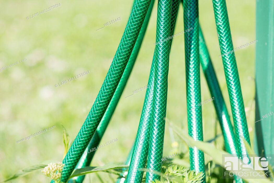 Stock Photo: Green garden hose. Detail of gardening equipment.