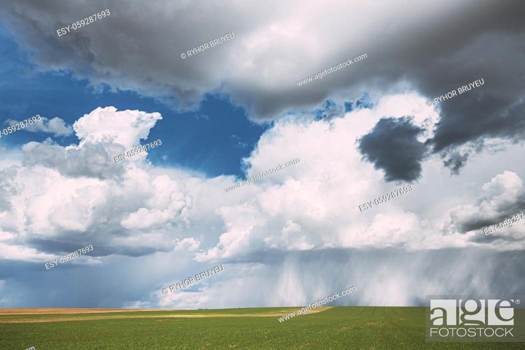 Stock Photo: Countryside Rural Field Meadow Landscape In Sunny Rainy Spring Day. Scenic Sky With Rain Clouds On Horizon. Agricultural And Weather Forecast Concept.