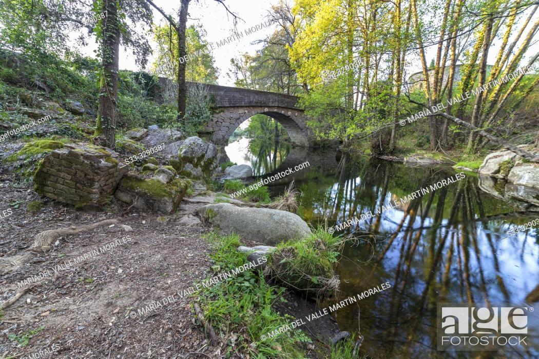 Imagen: Bridge over Arenal river in spring time. Avila. Spain. Europe.