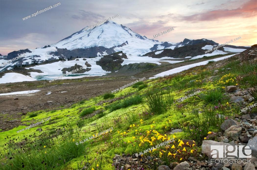 Stock Photo: Mount Baker 10,781 ft (3,286 m), Mount Baker Wilderness Washington.