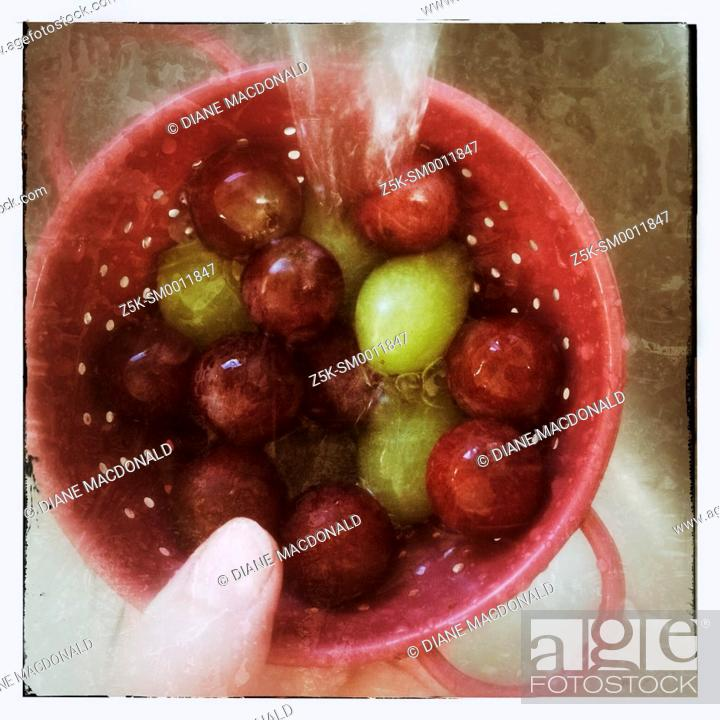 Stock Photo: Washing red and green grapes in a small colander.
