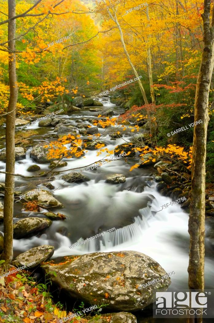 Stock Photo: Waterfalls in the middle prong of the Little Pigeon River in Tremont of Great Smoky Mountains National Park, Tennessee, USA in Autumn.