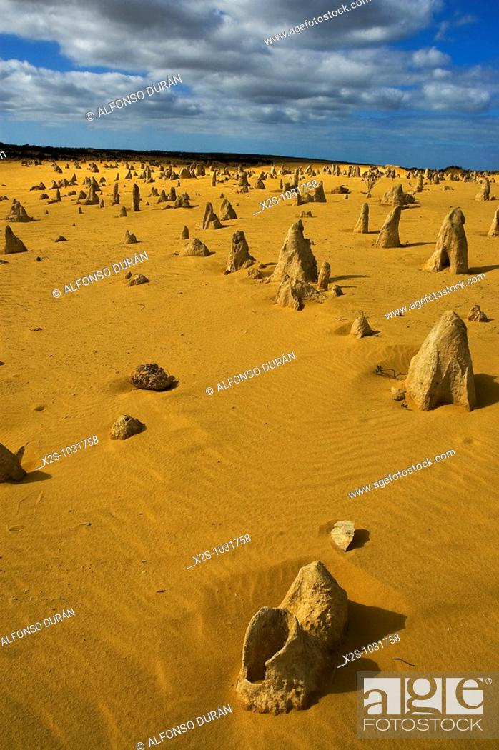 Stock Photo: Pinnacles, Nambung National Park, Western Australia, Australia.