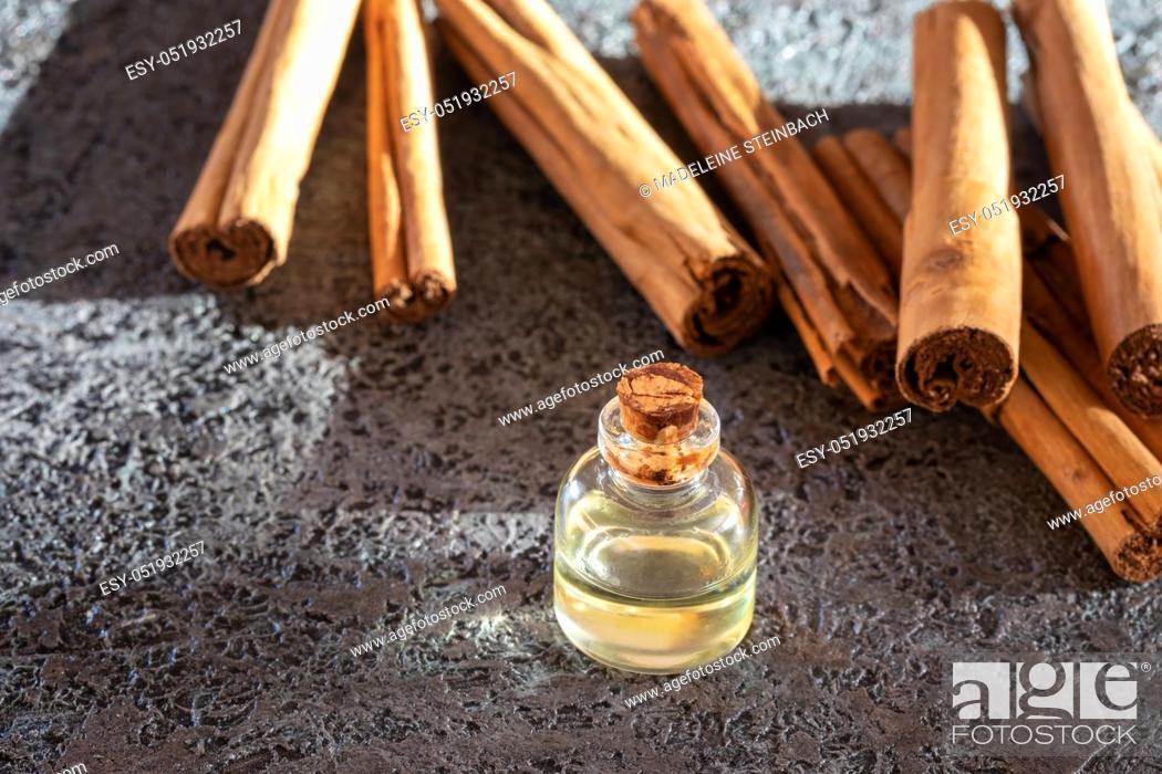 Stock Photo: A bottle of essential oil with true Ceylon cinnamon sticks on a dark background.