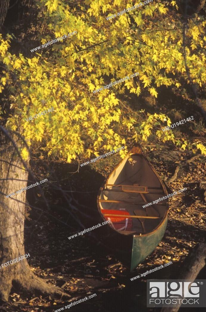 Stock Photo: Canoe in Autumn.