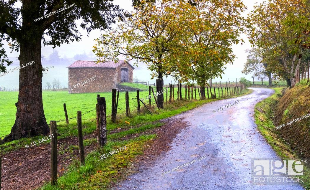 Stock Photo: France, Auvergne, Cantal, autumn near Saint Constant.