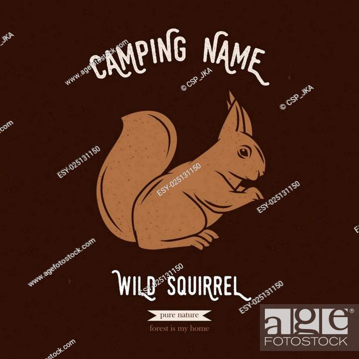Stock Vector: Forest squirrel vector illustration. European animals silhouettes with lettering chalk board. Camping logo gesign.