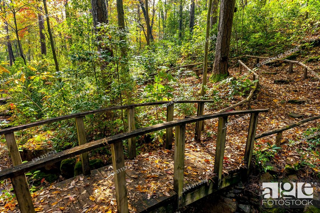 Stock Photo: A trail over a small foot bridge through a forest in autumn.