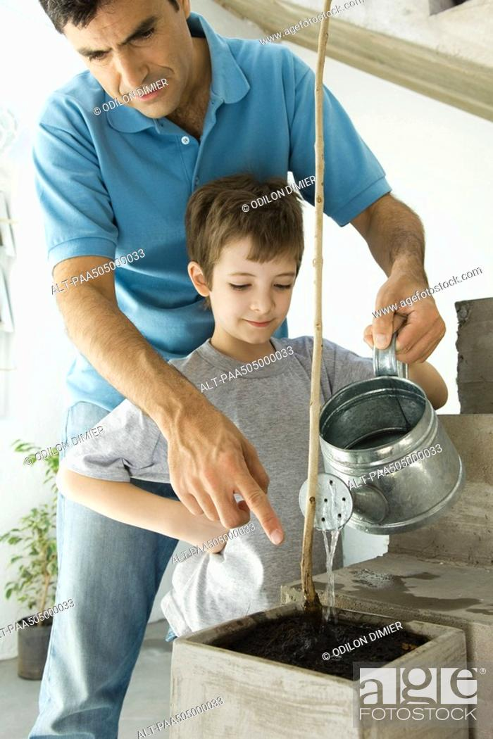 Stock Photo: Father and son watering plant together.
