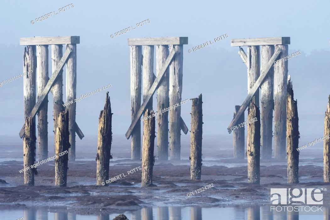 Stock Photo: Pilings and a railroad trestle remain at Trestle Bay; Hammond, Oregon, United States of America.