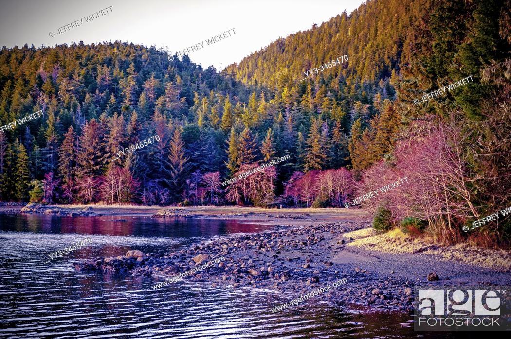 Stock Photo: Rocky shore at Starrigavan Recreation Area near Sitka, Alaska, USA. .