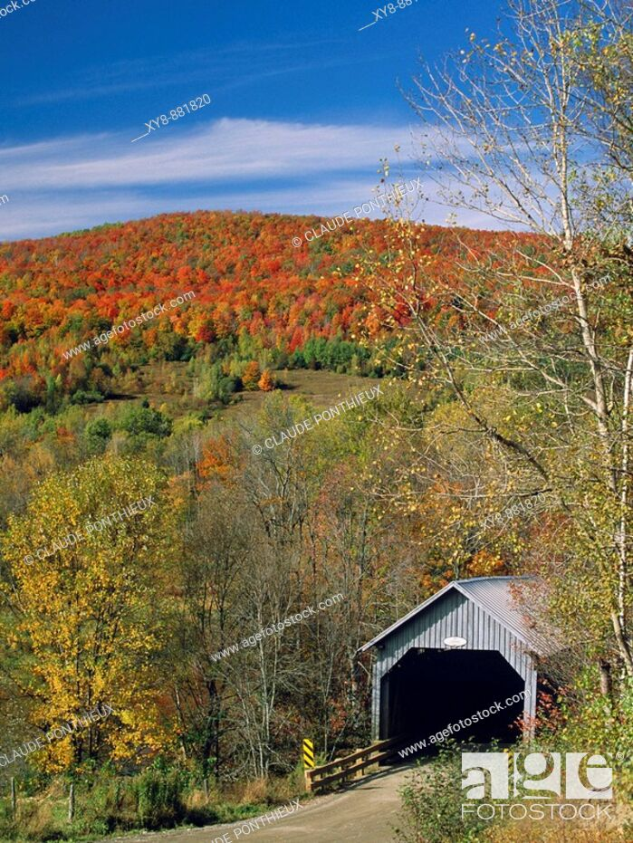 Stock Photo: Covered-Bridge.