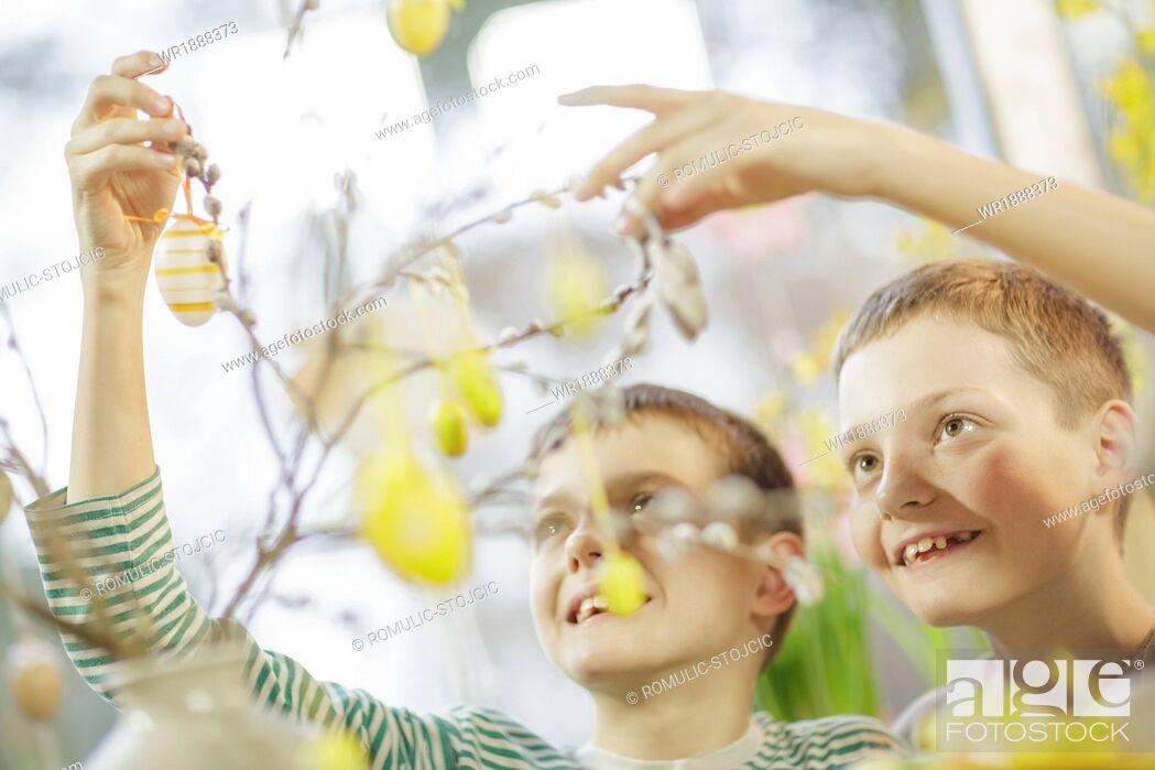 Stock Photo: Boys Hanging Easter Decoration, Osijek, Croatia, Europe.