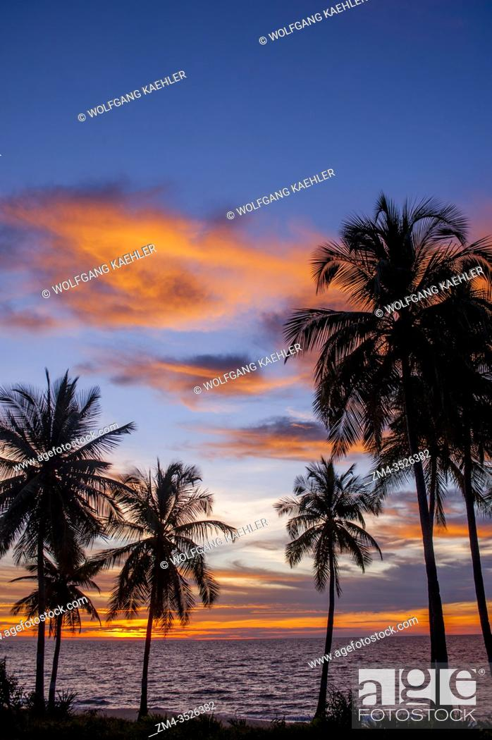 Stock Photo: Coconut palm trees silhouetted in a fiery sunset at Anjajavy Resort, Madagascar.