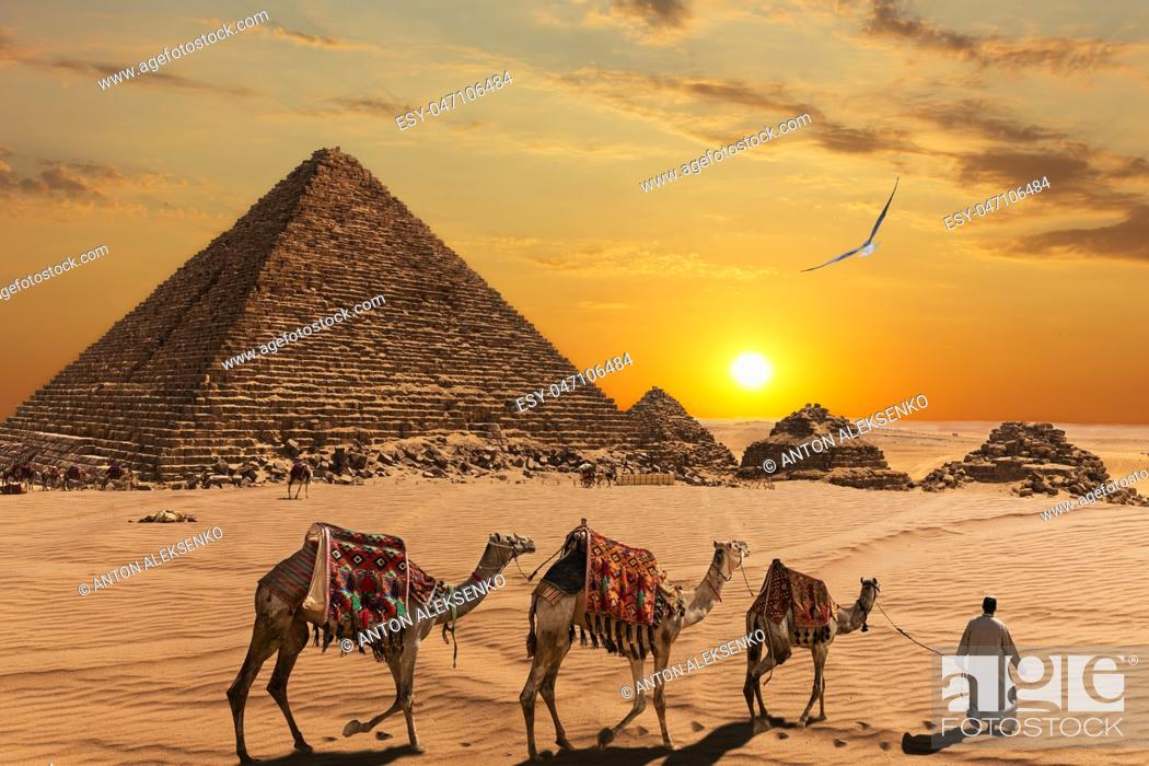 Stock Photo: The Pyramid of Menkaure and the three pyramid companions, the camels and the bedouins in the desert.