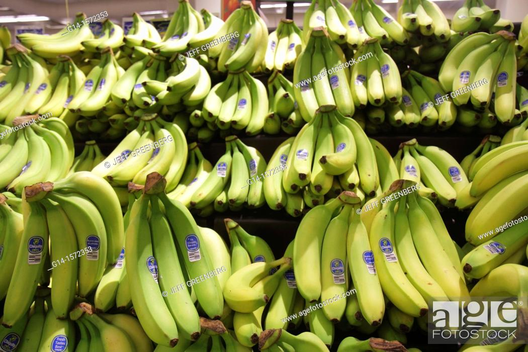 Stock Photo: Florida, Miami Beach, Publix, grocery store, supermarket, food, business, retail display, for sale, shopping, bananas, bunches, green, Chiquita, brand,.