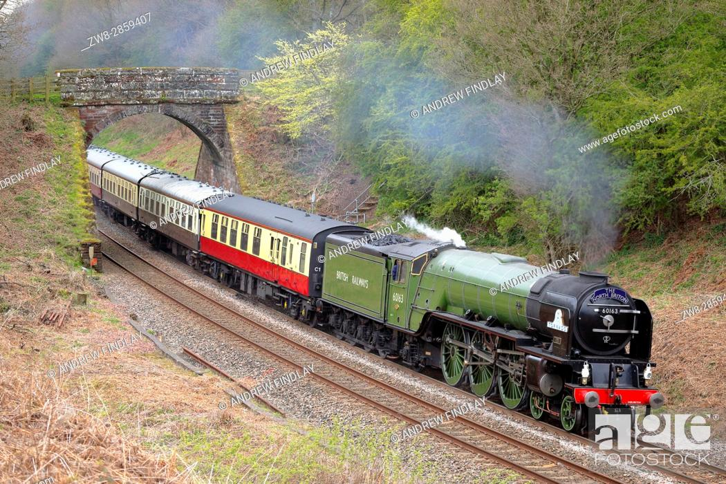 Stock Photo: Steam train LNER Peppercorn Class A1 60163 Tornado. Cowran Cut, Cowran Cutting, Brampton, Newcastle & Carlisle Railway, N&CR, Cumbria, England, United Kingdom.