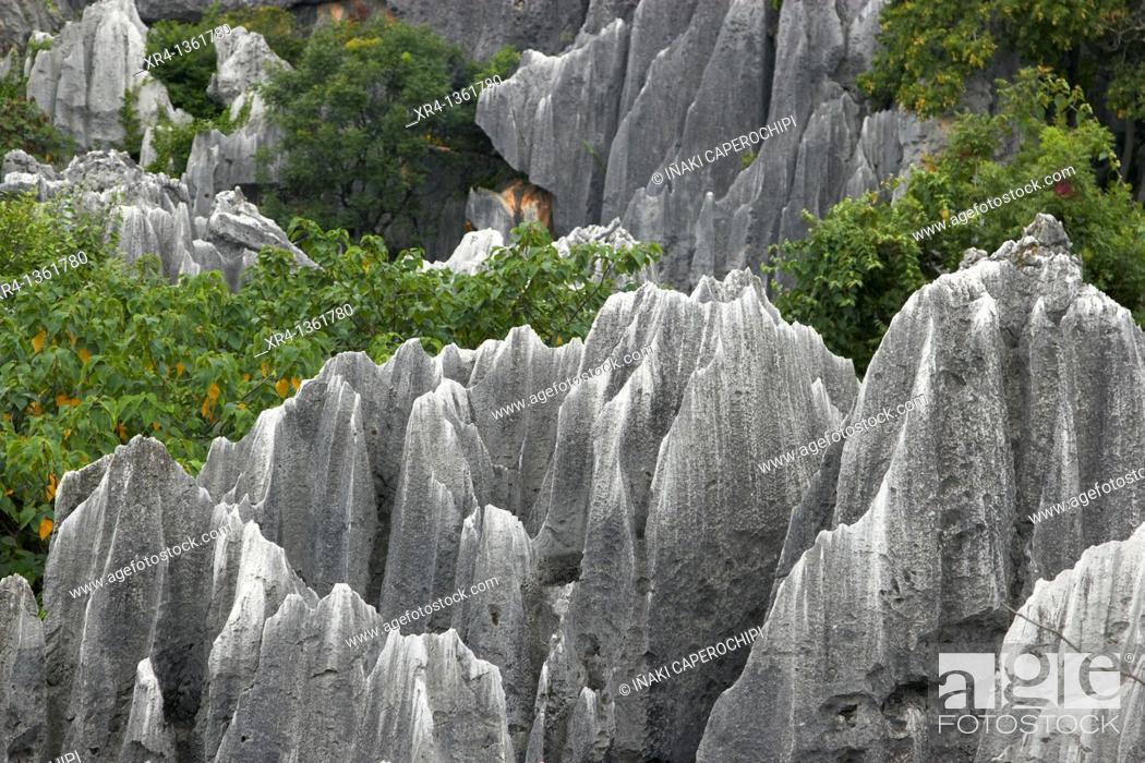 Stock Photo: Shilin Stone Forest, Shilin, Yunnan, China.