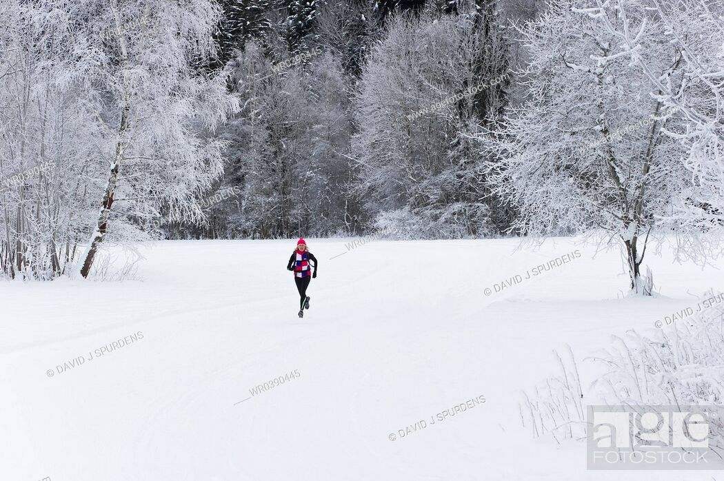 Stock Photo: A jogger running through a snowy landscape.